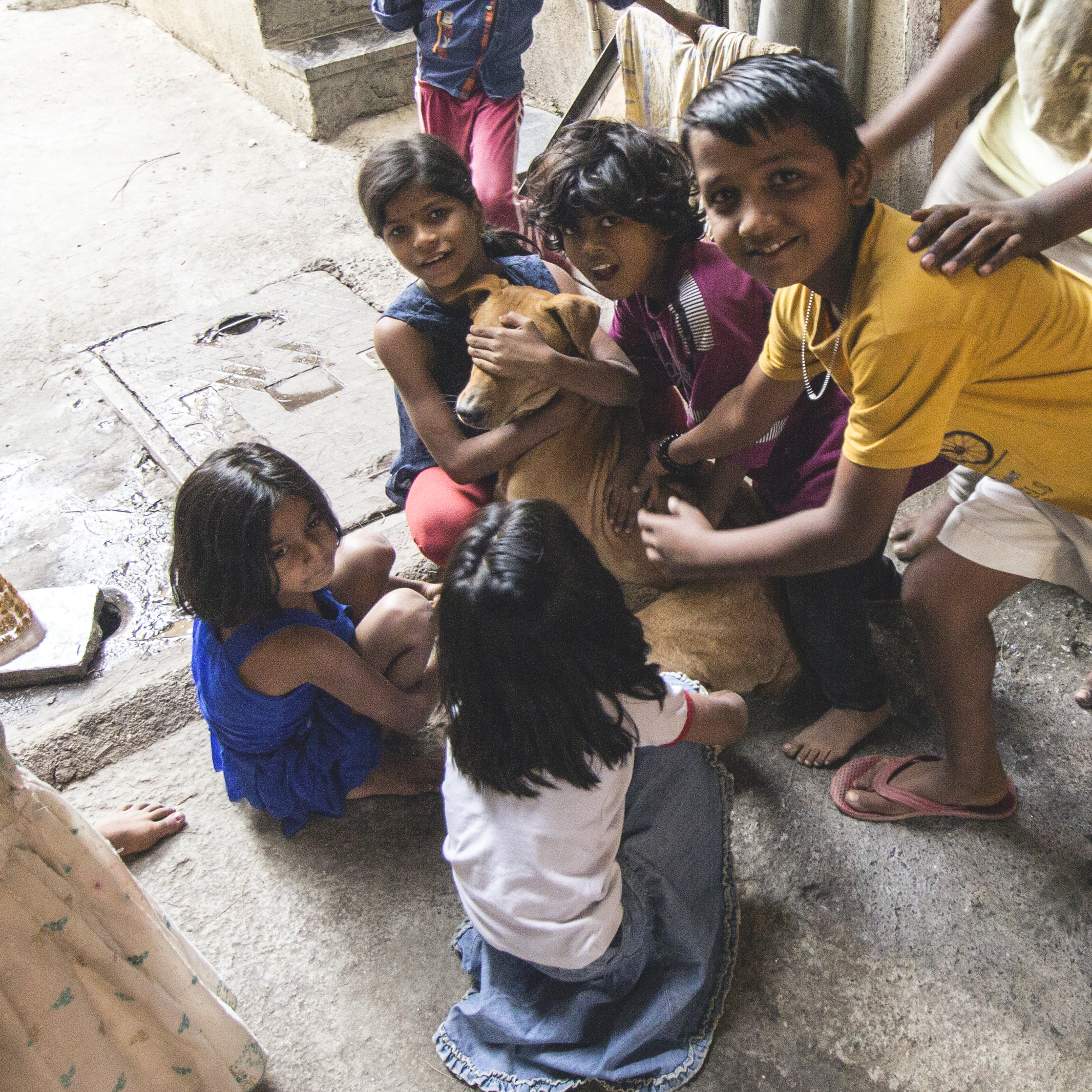 Children playing with a dog